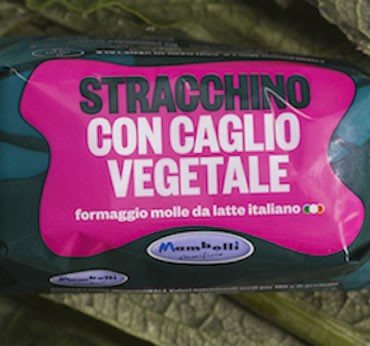 Stracchino with vegetable Rennet